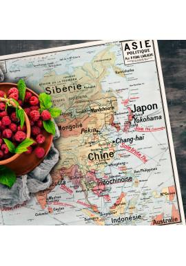 Set de Table Carte Scolaire Vidal Lablache n°15 - Asie Politique - Ciment Factory