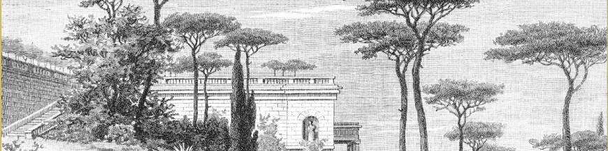 Papier Peint et Panoramiques