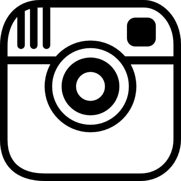 Instagram L'oiseau fait son nid